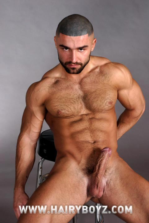Free Hairy gay photos, gay Hairy porno pictures -