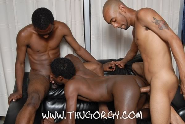 watch gay sex porno orgy with black thugs fucking