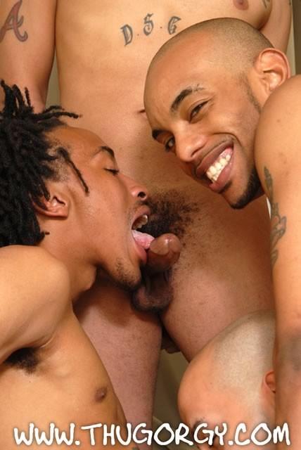 Www black thug orgy com for