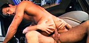 Ransom from Raging Stallion