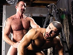 Gay Pornhome - Alpha from Raging Stallion