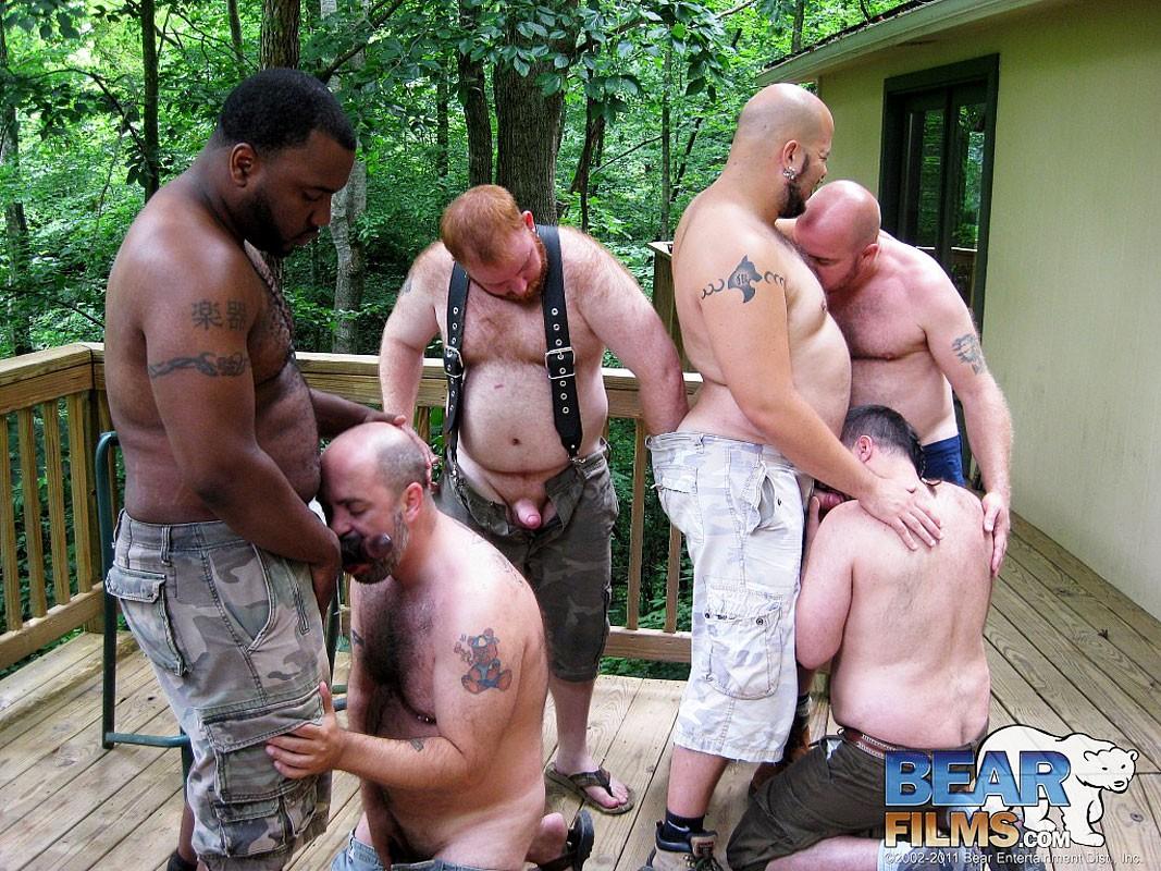 Gay bear camping