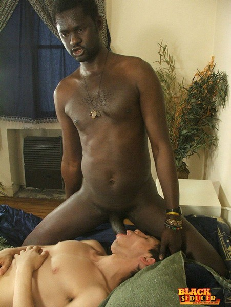 Black Cocks For White Twink