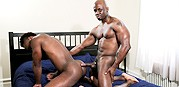 Knotty Boys from Next Door Ebony